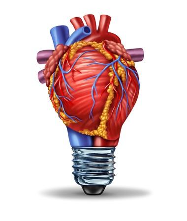 Heart Health Ideeën en nieuwe cardiovasculair onderzoek innovatie als een medische concept met een menselijk bloed pompen orgel in de vorm van een gloeilamp als een symbool van de anatomie circulatie ziekte oplossingen en het ontwikkelen van nieuwe medicijnen genezen Stockfoto