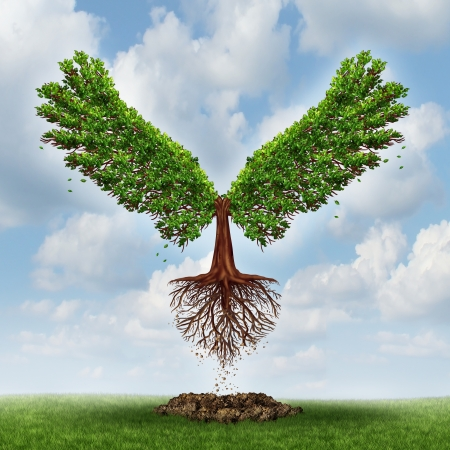 breaking free: Moving up and the power of success with a growing  tree in the shape of wingsthat has emerged out of the ground and has taken flight upward to opportunity as a business concept of the evolution of successful leadership and strategic planning  Stock Photo