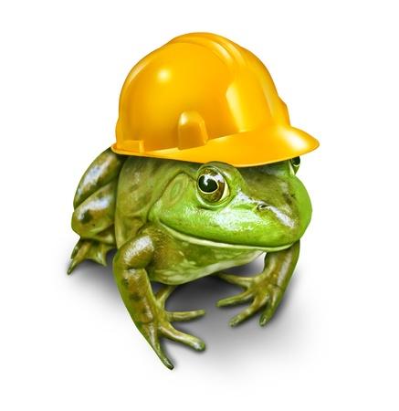 desarrollo sustentable: Desarrollo responsable concepto de medio ambiente con una rana verde que lleva un casco amarillo de la construcción como un símbolo de la conservación y protección del hábitat de la vida silvestre que se ve amenazada por los nuevos bienes inmuebles o proyectos de la industria de recursos Foto de archivo