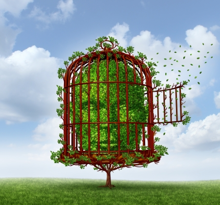 break out of prison: Freedom of the mind concept as a tree in the shape of a human head trapped by branches shaped as an open  birdcage or bird cage for personal growth and escaping obstacles of life for change as a metaphor for thinking outside the box  Stock Photo