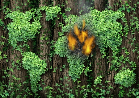 War in the Middle East concept as a forest of tall trees with a green vine growing shaped as the map of the world with the conflict zone burning with fire and smoke representing civil war revolution and political unrest  photo