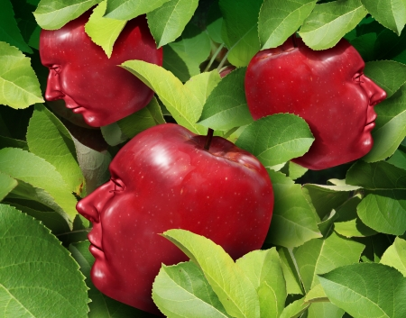 the fruitful: Team Planning as a business symbol for communication and cooperation success as a group of red apples in the shape of a human head growing together as a fruitful partnership within a company represented by an apple tree