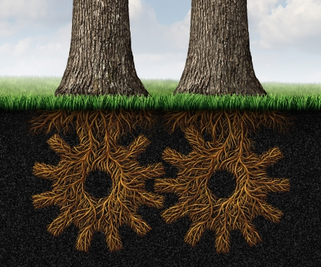 merging together: Deep Partnership business concept and financial cooperation symbol as two growing trees with underground roots shaped as gears and cog wheels connected together in a working relationship network  Stock Photo