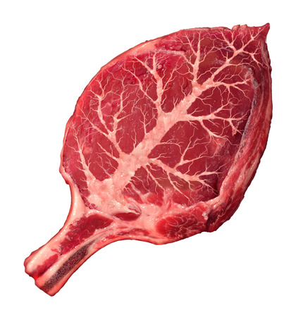 protein source: Organic meat and natural food as a raw steak in the shape of a green leaf as a symbol for responsible agriculture and grass fed antibiotics and hormone free organically grown healthy protein source from a certfied beef farm  Stock Photo