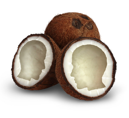 good cholesterol: Brain food and natural therapy with a healthy eating diet concept as an opened organic coconut seed in the shape of a human head as a symbol for foods that are nutritiuos containing essential vitamins and minerals for good health