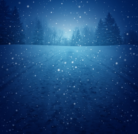 winter: Winter landscape concept as a snowing blue background with a pedestrian road in perspective with foot prints leading to a forest of trees as a festive seasonal symbol of a tranquil and traditional holiday scene