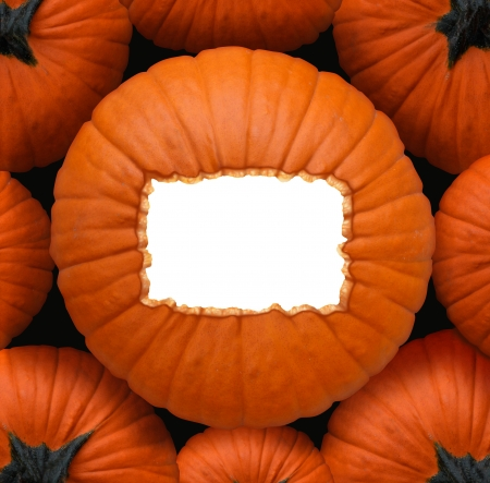 centerpiece: Pumpkin blank sign as a Halloween and thanksgiving celebration concept as a group of orange pumpkins and a centerpiece with a white copy space frame for a harvest time celebration message  Stock Photo