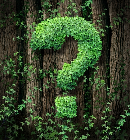forest conservation: Environmental conservation concept as a forest of trees and a green vine growing into the shape of a question mark as a metaphor for the protection of the of forests and growth issues in business