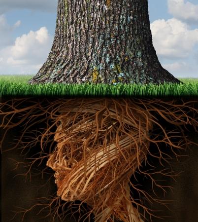 Wortel schieten en het nemen van wortels zakelijke en zorgconcept met ondergrondse boomwortels in de vorm van een menselijk hoofd als een hoge boom groeit boven als een icoon van de groei en het succes in de gezondheidszorg en rijkdom Stockfoto