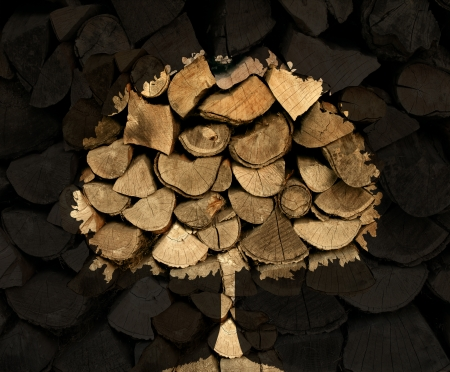 environmental issues: Lumber industry concept with a stack of chopped tree logs or firewood with a shadow in  the shape of a tree symbol as a nature icon of  forestry and environmental conservation issues. Stock Photo