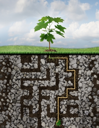 overcoming adversity: Growth solutions business concept as a metaphor with a tree emerging from a seed sprouting roots that have journeyed a challenging maze or labyrinth of underground rocks to reach financial success