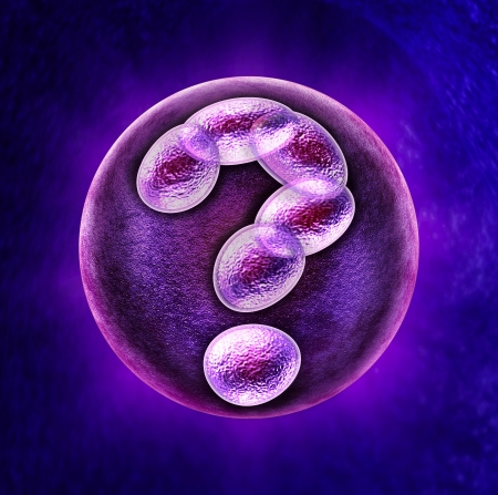 stem cell: Genetic questions medical health care concept with a fertilized human egg embryo and a group of dividing cells in the shape of a question mark as a concept for fertility DNA and gene related issues