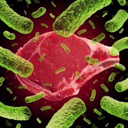monella: La contaminaci�n de la carne y el concepto de alimentos contaminados con un filete beaf roja cruda infectada con bacterias peligrosas como E coli resulta en peligros para la salud y la situaci�n m�dica de peligro biol�gico como un s�mbolo de un riesgo para la salud