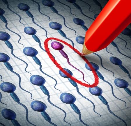 Sélection du sperme humain et le tri comme un concept de reproduction pour choisir le sexe d'un bébé ou meilleurs gènes mâles pour féconder un ovule de la femme comme un crayon rouge entourant un spermatozoïde choisi parmi un groupe de cellules Banque d'images - 24620319