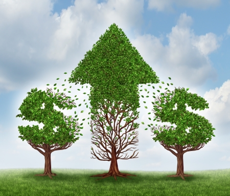 tranfer: Money growth concept and investing in new business opportunities with future potential to grow as two trees shaped as dollar signs transfering their leaves to another plant that represents an upward arrow of wealth and success