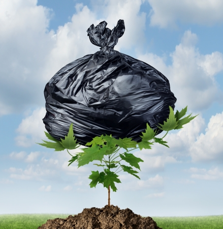 a black plastic garbage bag being lifted and displaced by a powerful green tree sapling