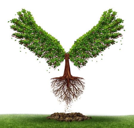 Vrijheid potentieel en de kracht van de bepaling als een bedrijf en het leven concept met een groene boom groeit open vleugels en vliegen naar succes als een metafoor voor de ontwikkeling om de gelegenheid te vinden