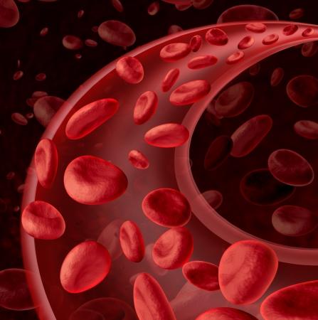 vasos sanguineos: Las células sanguíneas símbolo de la circulación como un concepto de cuidado de la salud médica con un grupo de tres células humanas dimensionales que fluye a través de una arteria o vena dinámico conectado al sistema circulatorio