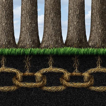木のグループとしてアンブレイカブル連帯とチームワーク協力概念地下道で直結