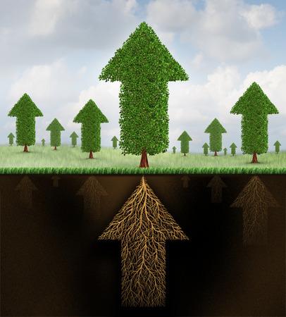 Financiële stabiliteit en sterk groeiende economie metafoor als een groep van bomen in de vorm van pijlen en een wortelstelsel gevormd als een pijl omhoog naar succees als een bedrijf symbool van economische teamwork kracht