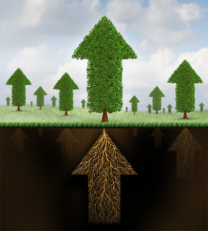 Financial stability and strong growing economy metaphor as a group of trees shaped as arrows and a root system shaped as as an arrow pointing up towards succees as a business symbol of economic teamwork strength