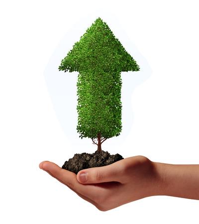 thriving: a human hand holding an upward growing arrow tree  in soil