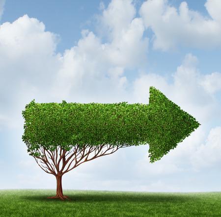 Groei Begeleiding advies business metafoor als een horizontale pijl boom wijst naar een aanbevolen richting voor succes in financiën en onderwijs of carrièrepad gids symbool