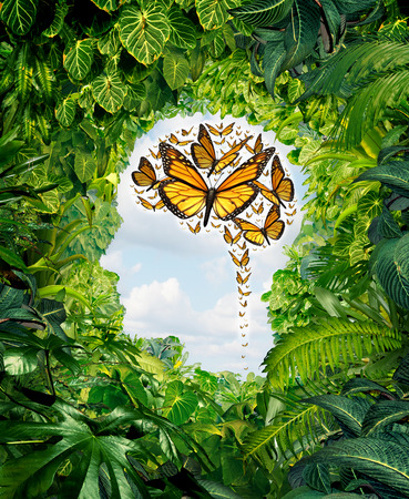 Intelligence and human creativity as a freedom of ideas symbol on a green jungle landscape shaped as a head and a group of flying monarch butterflies in the shape of a brain as a mental health and education metaphor for the potential of the mind  Banque d'images