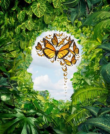 Intelligentie en menselijke creativiteit als een vrijheid van ideeën symbool op een groene jungle landschap in de vorm van een hoofd en een groep vliegende monarch vlinders in de vorm van een brein als een mentale gezondheid en onderwijs metafoor voor het potentieel van de geest Stockfoto