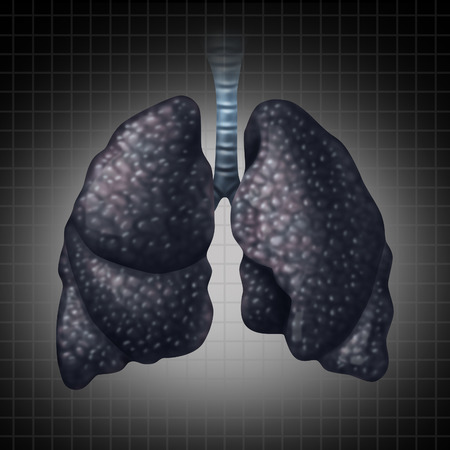 Human lung disease health care concept as a decline in respiratory function caused by cancer or disease as black lung as a damaged organ slowly losing function   Stock Photo