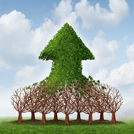 Team growth and corporate profit business concept with a group of growing trees joining together to form an upward arrow as teamwork development metaphor for financial success
