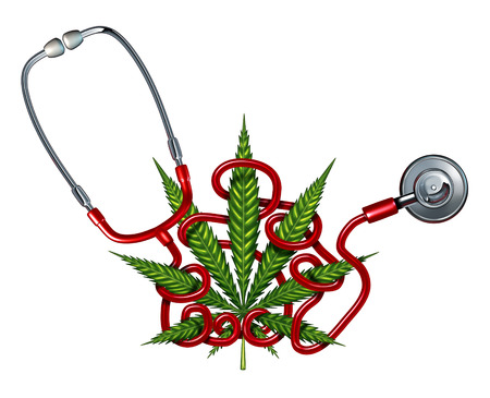 health symbols metaphors: Marijuana Health Care challenges concept as a doctor stethoscope tangled in a cannabis leaf as a crisis metaphor for confusion and uncertainty with alternative therapy as natural herbal drug use and changing medical law