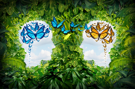 open mind: Education communication concept as a jungle with open spaces shaped as human heads and butterflies as the shape of a brain flying from one person to another as a metaphor for training and cooperation learning