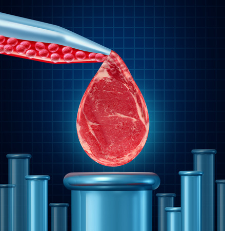 artifical: Lab grown meat concept as laboratory equipment developing artifical beef by cultivating animal tissue in vtro resulting in cruelty free synthetic protien that is edible as a symbol of future food engineering technology
