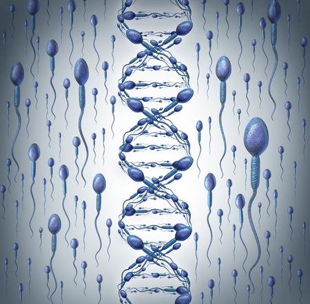 Man DNA symbool als menselijke zaadcellen vorm van een dubbele helix vruchtbaarheid bij mannen concept met een close-up van microscopische spermatozoa cellen zwemmen naar een ongrijpbare vrouwelijke eicel als medisch reproductie icoon van genetische informatie-overdracht