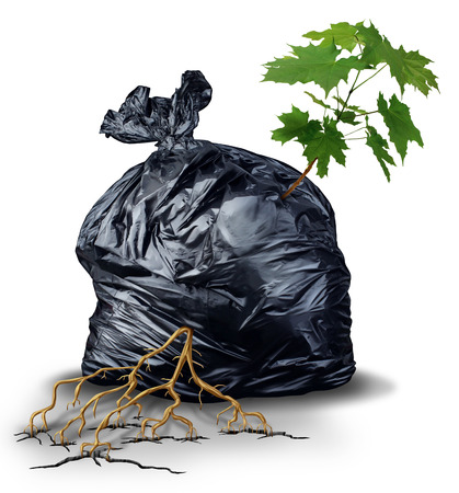 destined: Resilient And determined concept as a green sapling tree with leaves and roots bursting out and breaking through from a garbage bag as a metaphor for the force of nature and poerful business determination and persistence for success  Stock Photo