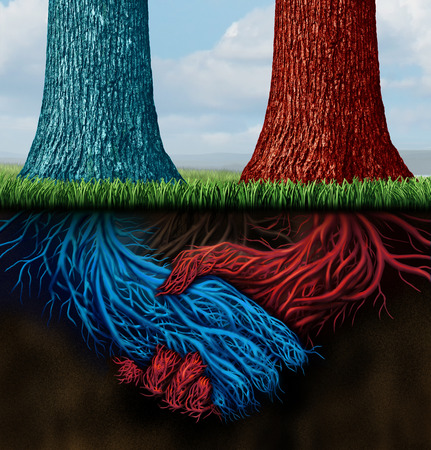 merging together: Confidential agreement and insider trading as two trees with underground roots shaped as a business handshake