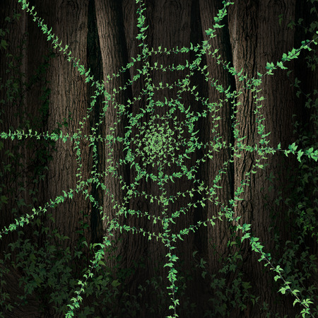 Green web concept as a growing vine in a tree forest as a symbol of environmental websites and internet sites and blogs supporting conservation and ecological issues for protection of the environment