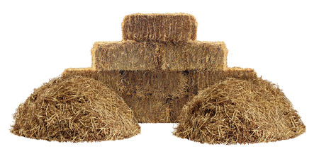 Hay pile and bundled tied haystack group isolated on a white background as an agriculture farm and farming design element as a symbol of harvest time with dried grass straw as a mountain of dried grass haystack  photo