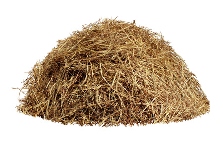 Hay pile isolated on a white background as an agriculture farm and farming symbol of harvest time with dried grass straw as a mountain of dried grass haystack  Stock Photo