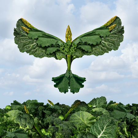 nutrition icon: Health food freedom diet concept with green vegetables and dark leafy food shaped as a bird flying upward as a healthy eating symbol of the power of fresh garden produce organically grown as an icon of natural nutrition as kale swiss chard spinach collard
