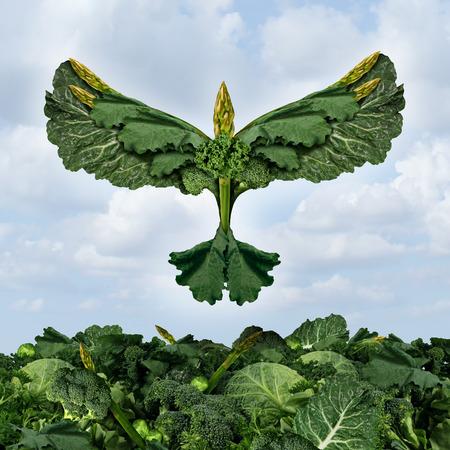verduras verdes: Productos alimenticios de salud concepto de dieta libre con verduras y alimentos de hoja verde oscuro en forma como un p�jaro que vuela hacia arriba, como un s�mbolo de la alimentaci�n saludable de la potestad del fresco jard�n productos cultivados org�nicamente como un icono de la nutrici�n natural como la col rizada acelgas espinacas collard