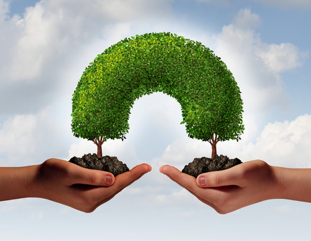 Multiracial hands unity concept as two human palms holding trees in soil growing together meeting to connect as a development symbol of friendship and togetherness as a team of partners supporting each other for success  Stock Photo