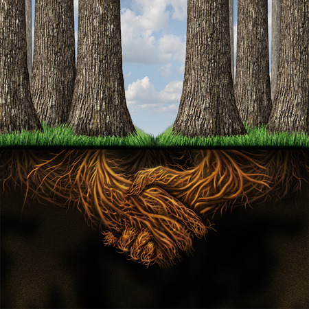 Team agreement business partners concept as two groups of trees coming together in friendship and cooperation for mutual growth success as deep underground roots shaped as businesspeople shaking hands  Stok Fotoğraf