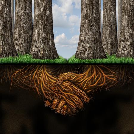 Team overeenkomst zakelijke partners begrip als twee groepen van bomen samenkomen in vriendschap en samenwerking voor wederzijdse groei succes zo diep onder de grond wortels gevormd als ondernemers handen schudden Stockfoto
