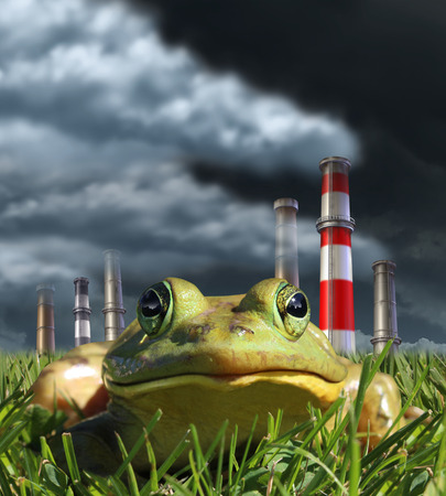 fragility: Environmental pollution and global warming concept with a frog sitting in front of a group of industrial smoke stacks releasing toxic fumes as a symbol for greehouse gas danger and the fragility of nature