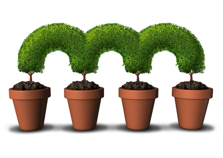 linked: Growth network business concept as a group of planting pots with trees connected together in a linked chain as a metaphor for communication and partnership success or bridging the gap by growing in unity