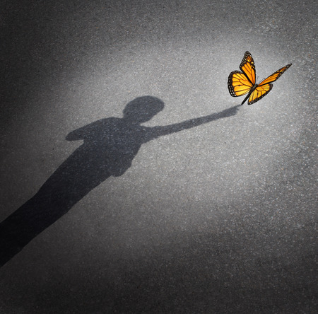 Wonder and discovery concept as a shadow of a child reaching out to touch a butterfly as an education and learning symbol of childhood curiosity and innocence towards nature and the world around them