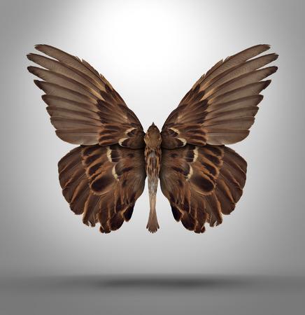 Veränderung und Anpassung Konzept mit einer offenen Flügel Vogel im Wechsel auf die neuen Herausforderungen in Wirtschaft und Leben anzupassen wie ein Schmetterling als Symbol des neuen surreal Rasse kreatives Denken und Freiheit förmigen