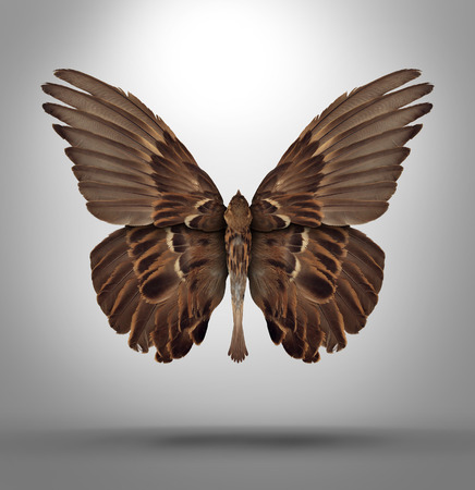 konzepte: Veränderung und Anpassung Konzept mit einer offenen Flügel Vogel im Wechsel auf die neuen Herausforderungen in Wirtschaft und Leben anzupassen wie ein Schmetterling als Symbol des neuen surreal Rasse kreatives Denken und Freiheit förmigen